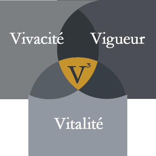V3 Chiropratique optimise vos 3V: Vivacité, Vigueur Vitalité