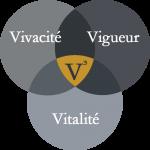Les 3 V de V3 Chiropratique Granby: Vitalité, Vigueur, Vivacité